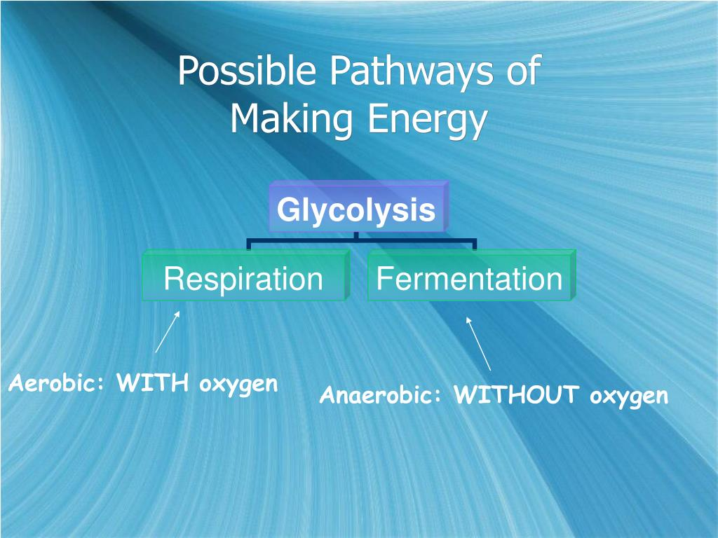 Possible Pathways of