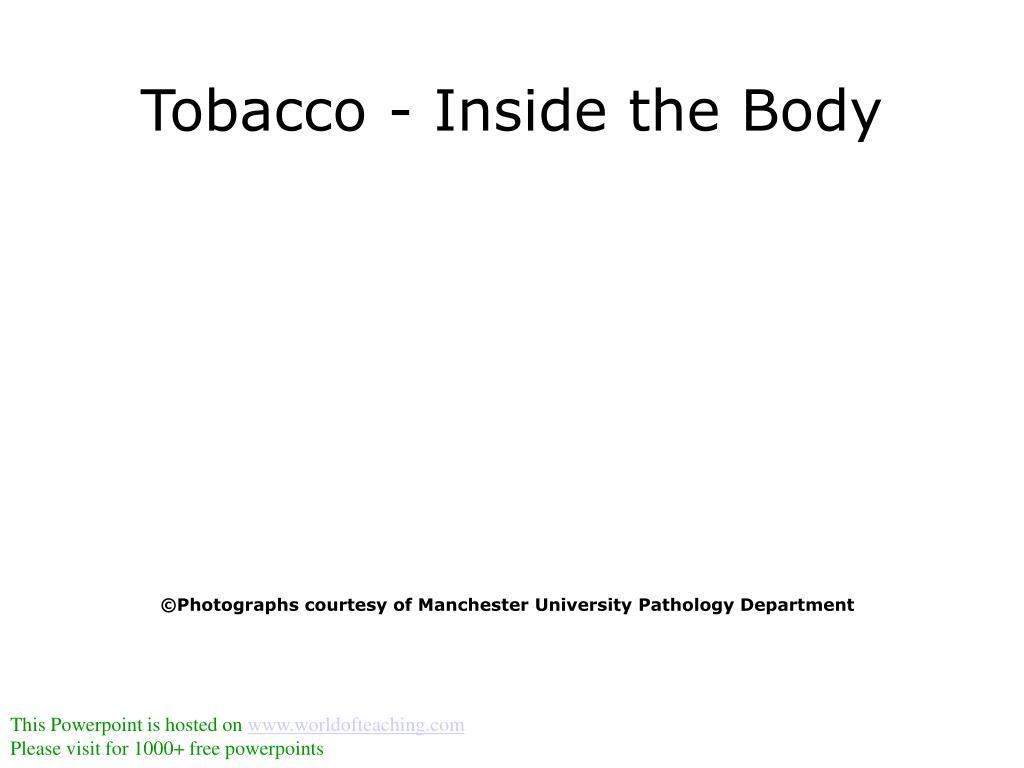 tobacco inside the body l.