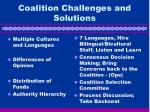 coalition challenges and solutions