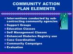 community action plan elements