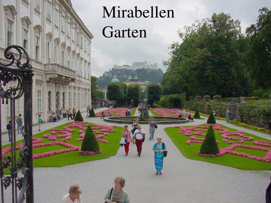 Mirabellen