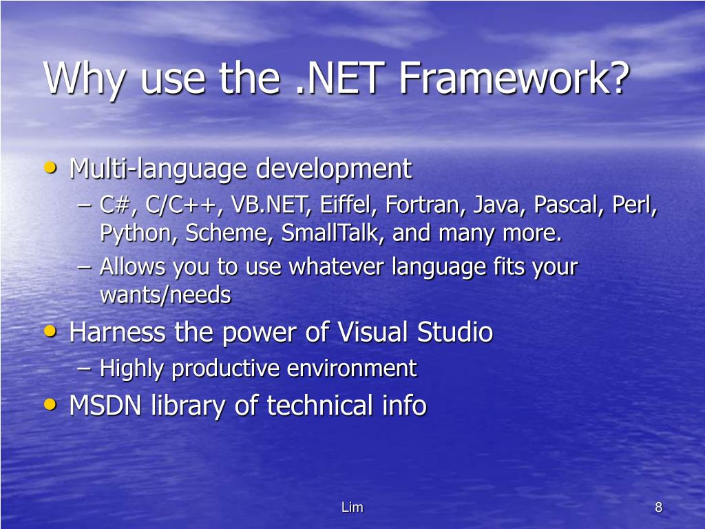 Why use the .NET Framework?