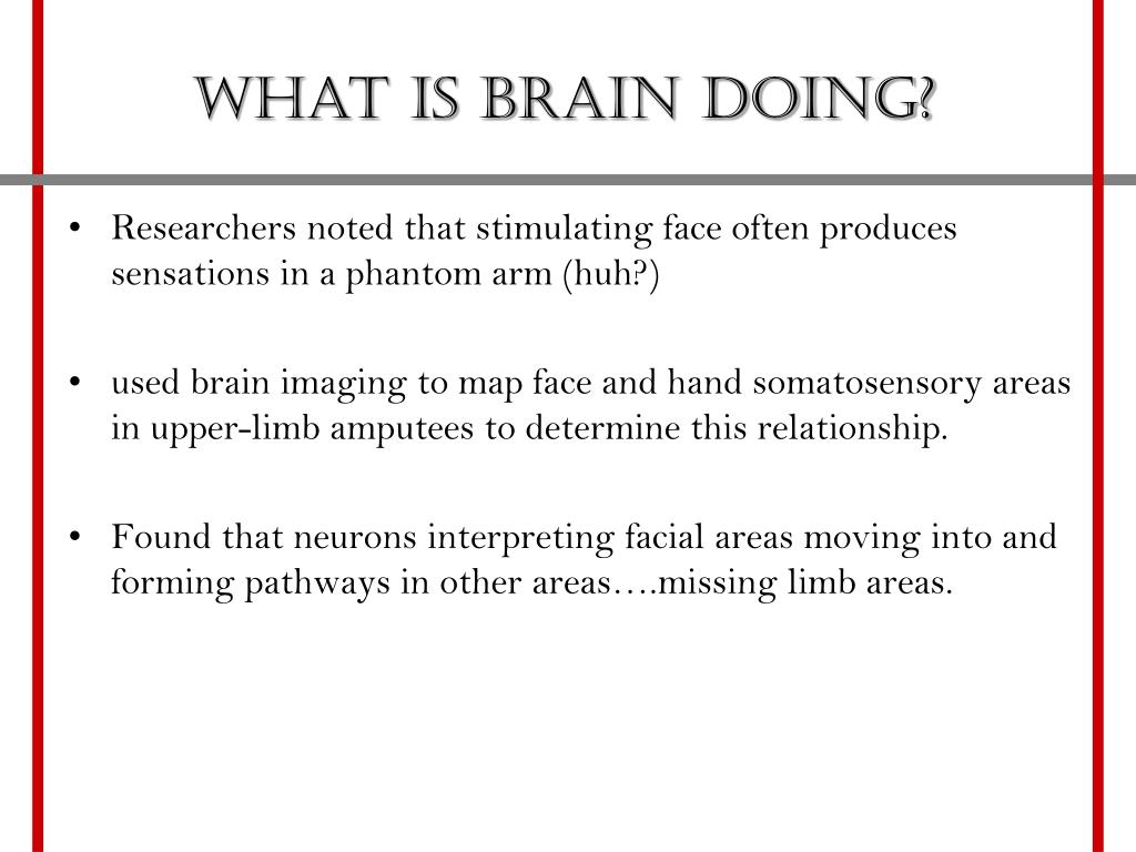 What is brain doing?