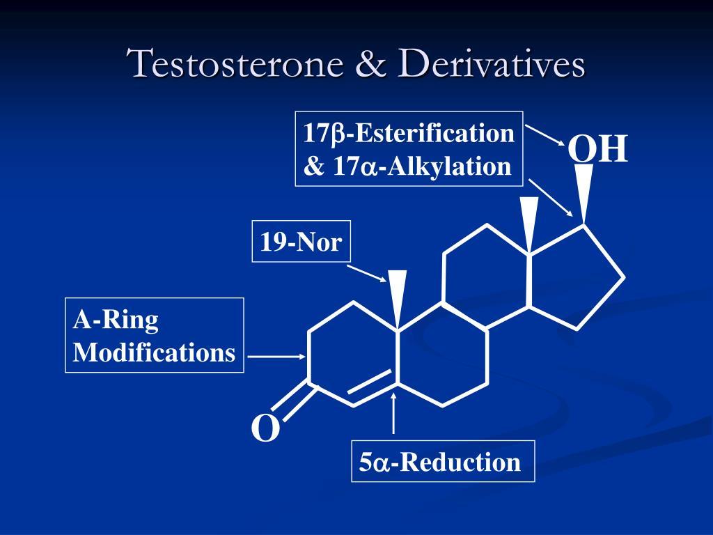 Testosterone & Derivatives