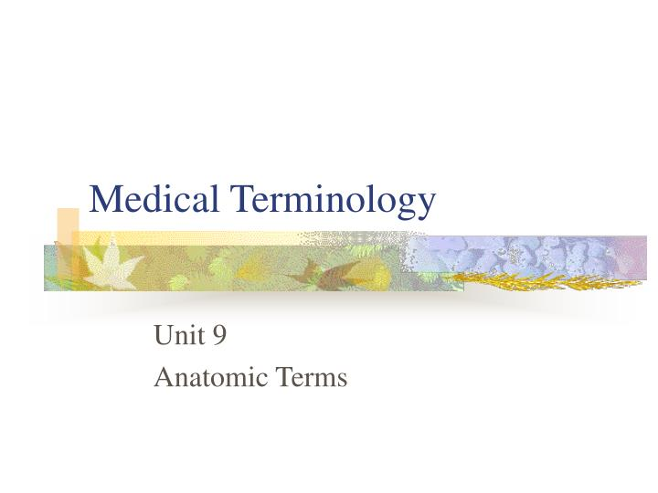 medical terminology hit 107 research project 40968700