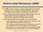 antimicrobial resistance amr