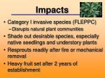 impacts1