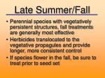 late summer fall