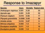 response to imazapyr