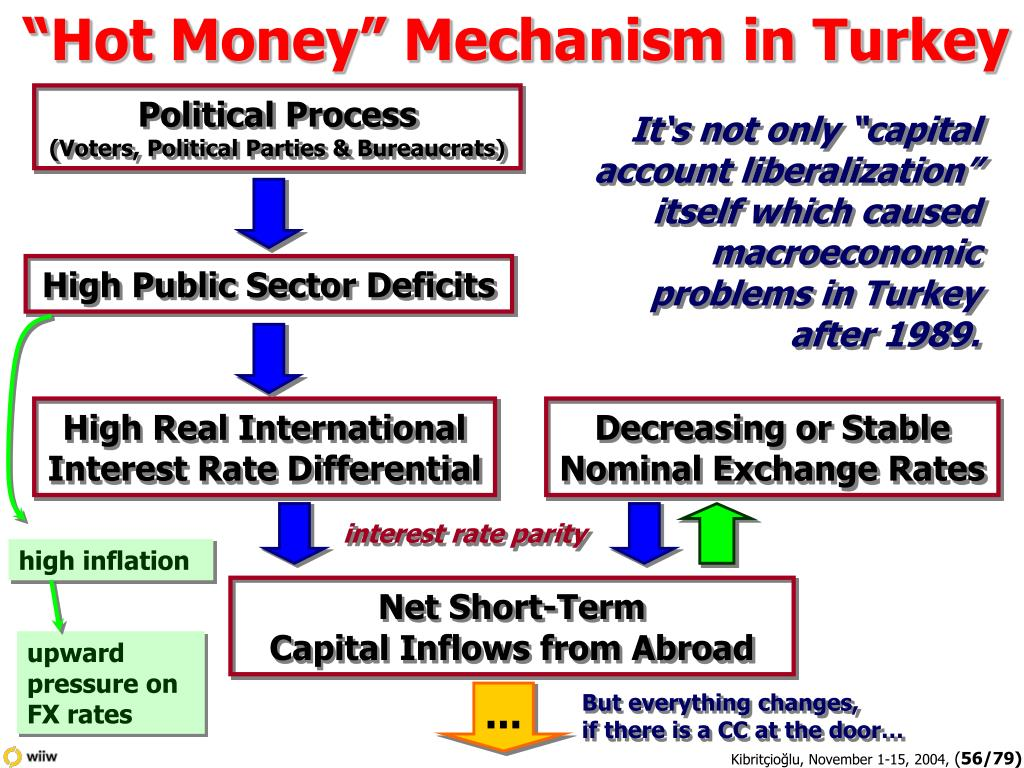 """Hot Money"" Mechanism in Turkey"
