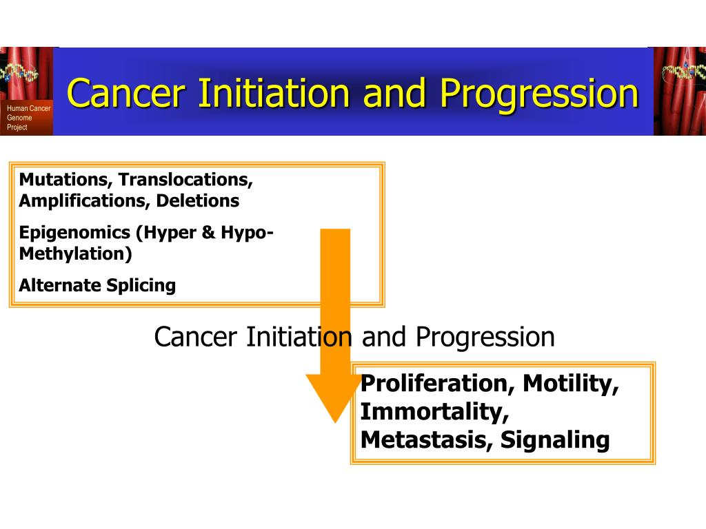 Cancer Initiation and Progression