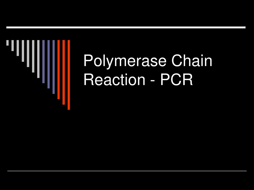 polymerase chain reaction pcr l.