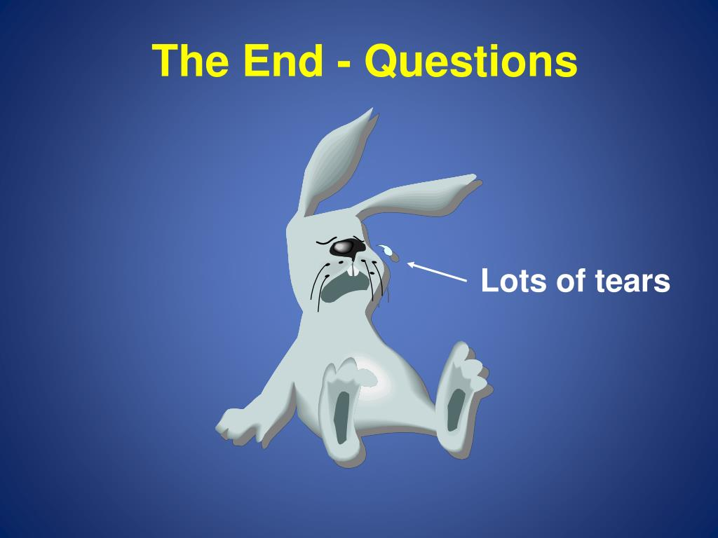 The End - Questions