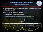 committee overview committee structure
