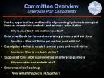 committee overview enterprise plan components