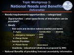 topic workgroup 1 national needs and benefits deliverables