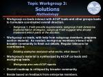 topic workgroup 3 solutions methodology