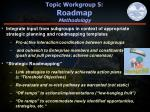 topic workgroup 5 roadmap methodology