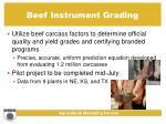 beef instrument grading18