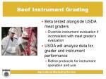 beef instrument grading19