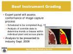 beef instrument grading20