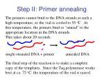 step ii primer annealing