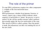 the role of the primer