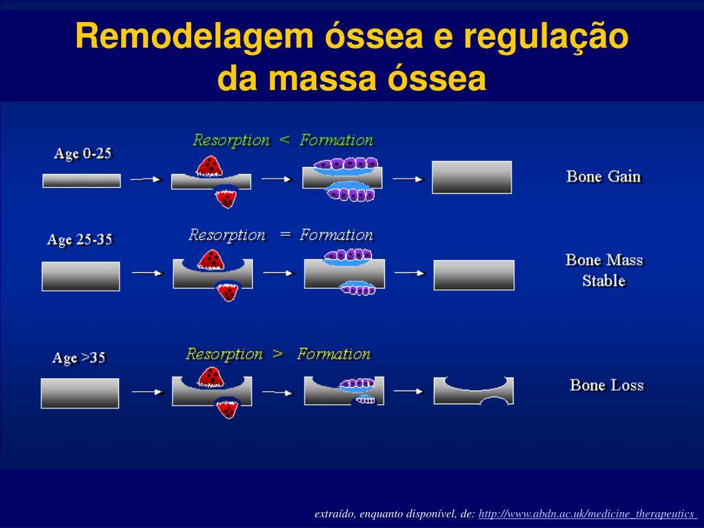 Remodelagem óssea e regulação