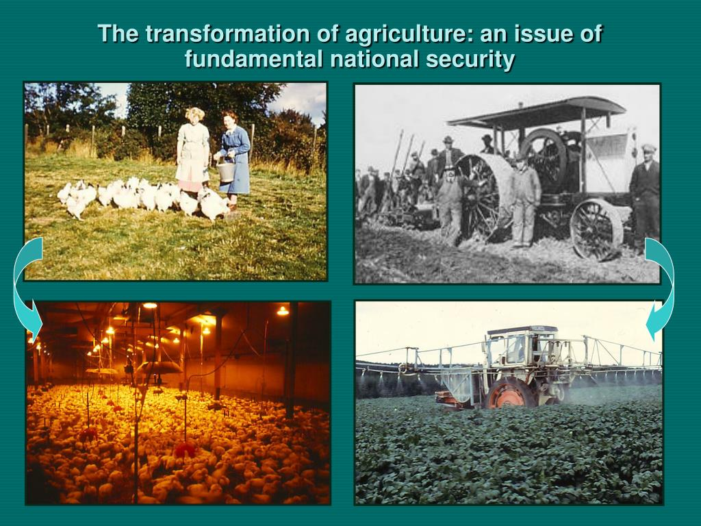 The transformation of agriculture: an issue of fundamental national security