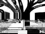 nsf tree base