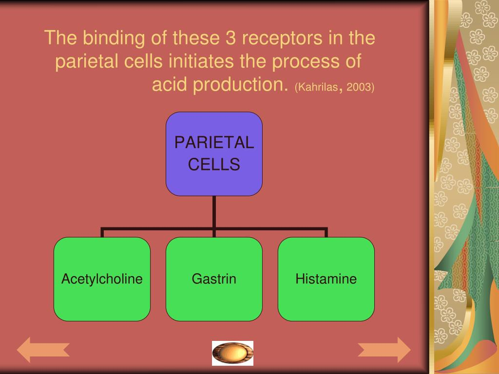 The binding of these 3 receptors in the