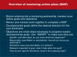overview of mentoring action plans map