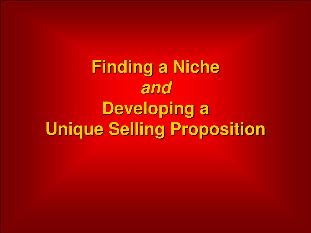 finding a niche and developing a unique selling proposition l.