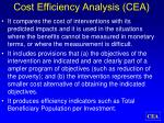 cost efficiency analysis cea