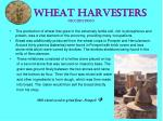 wheat harvesters occupation