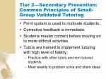 tier 2 secondary prevention common principles of small group validated tutoring92