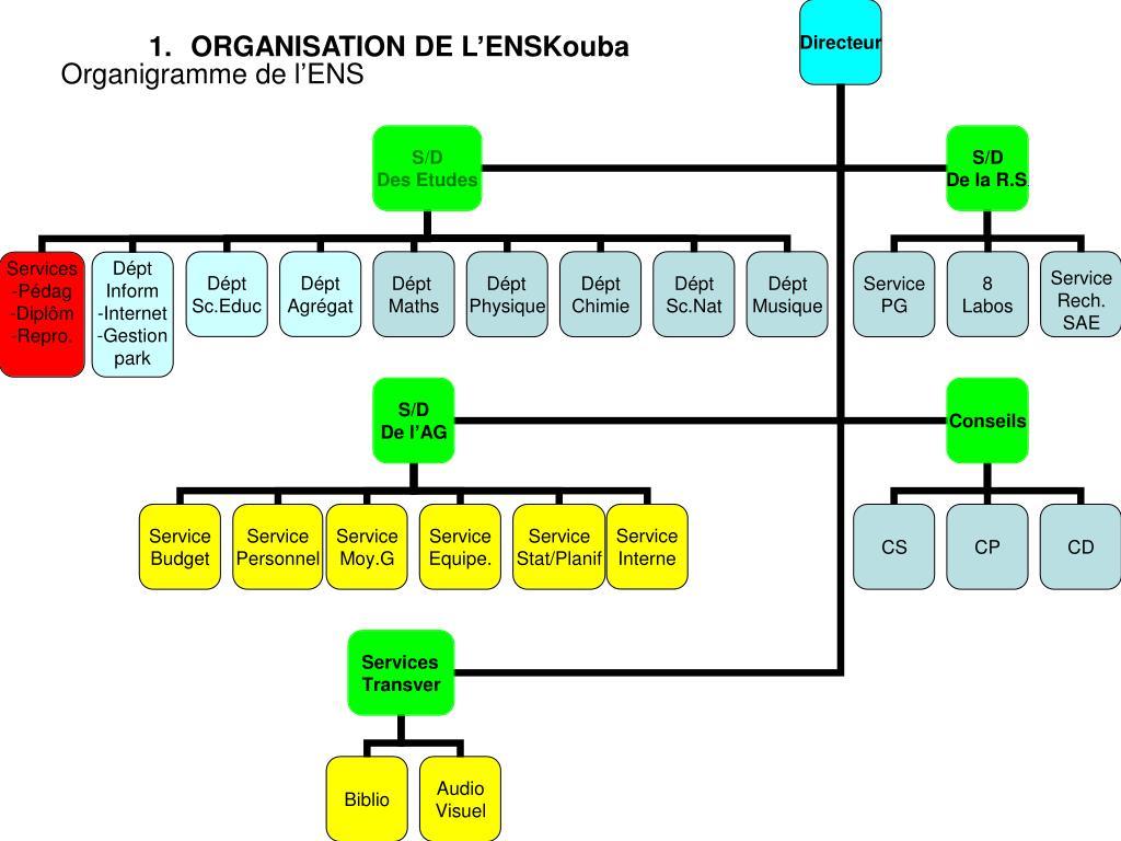 ORGANISATION DE L'ENSKouba