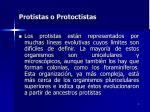 protistas o protoctistas4