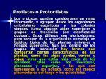 protistas o protoctistas5