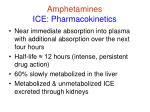 amphetamines ice pharmacokinetics