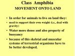 class amphibia movement onto land3