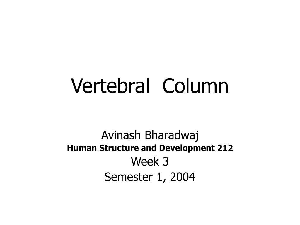 vertebral column l.