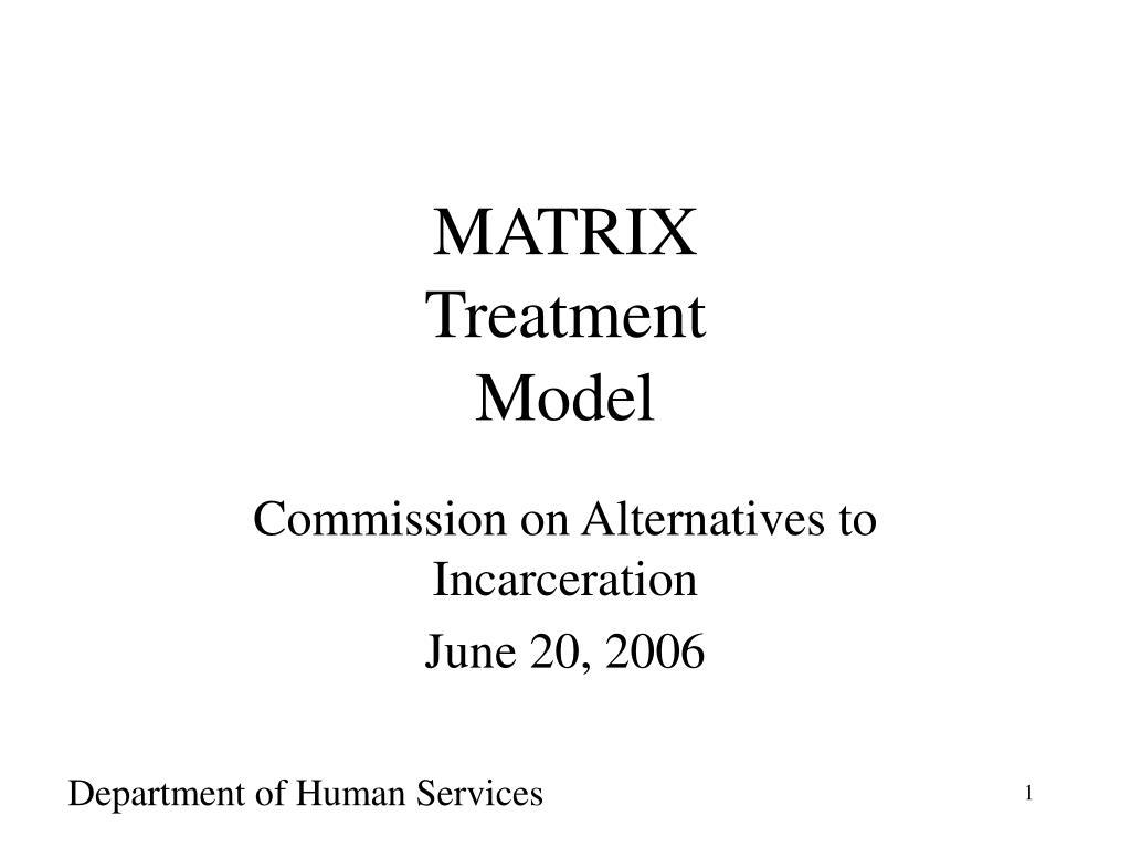 matrix treatment model l.