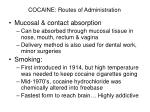 cocaine routes of administration10