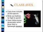 class aves49