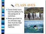 class aves53