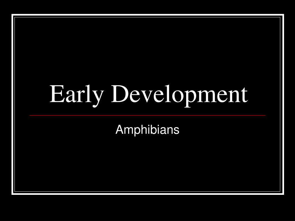 early development l.