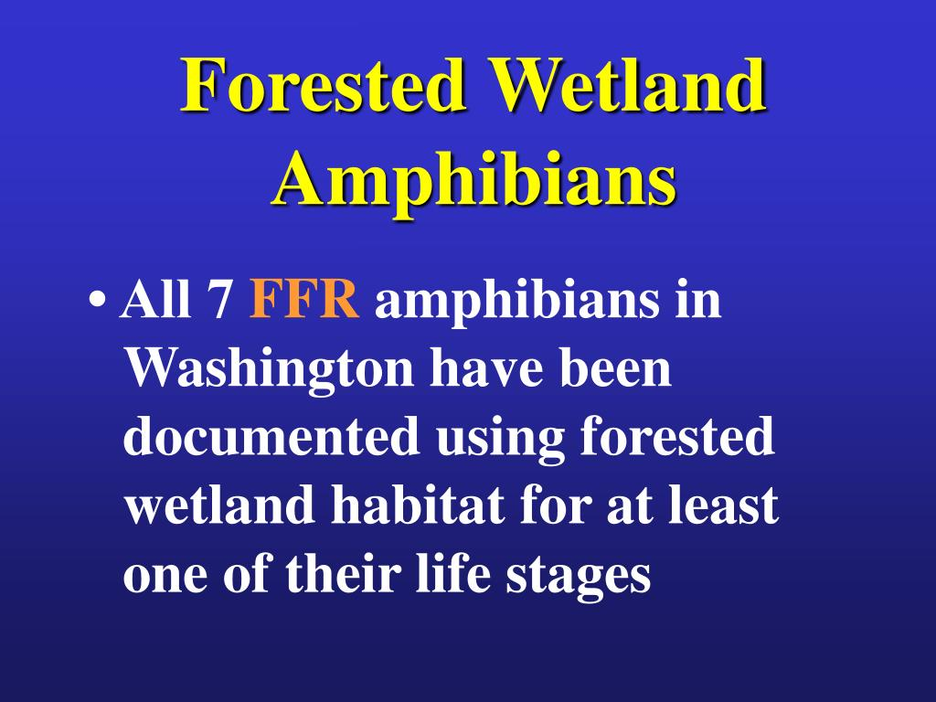 Forested Wetland Amphibians