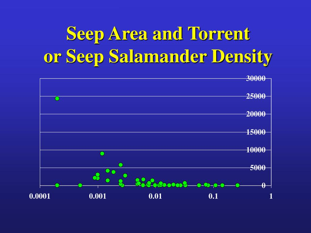 Seep Area and Torrent