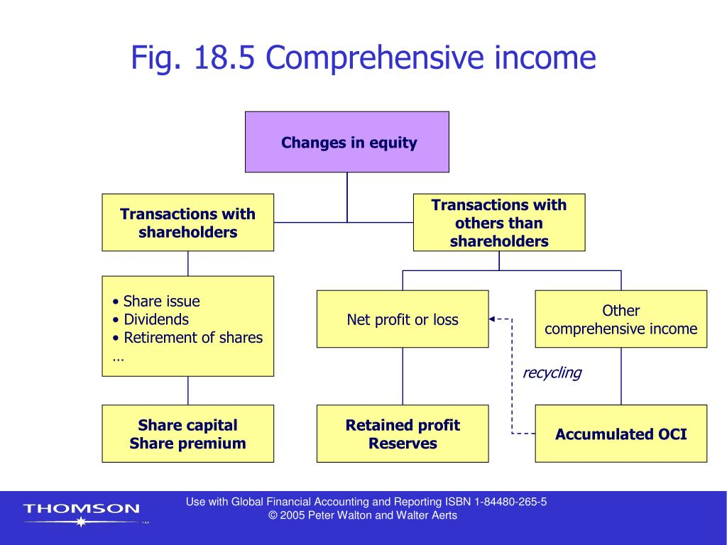 Fig. 18.5 Comprehensive income